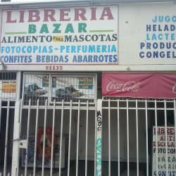 Librería Bazar - Los Toros en Santiago
