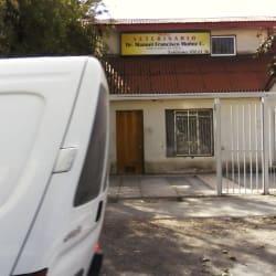 Veterinario Manuel Francisco Muñoz en Santiago