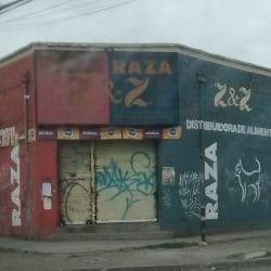 Distribuidora Alimentos ZyZ en Santiago