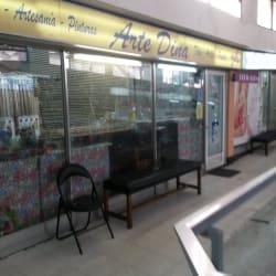 Librería Arte Dina en Santiago