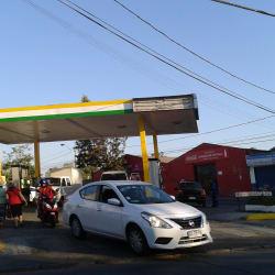 Estación De Servicio Petrobras - Gran Avenida José Miguel Carrera El Bosque en Santiago