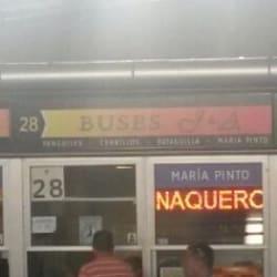 Buses Paravias en Santiago