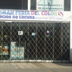 Gran Feria Del Color en Bogotá