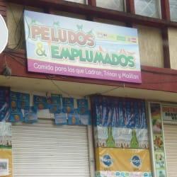 Peludos & Emplumados en Bogotá