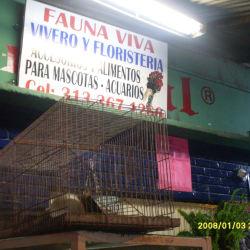 Vivero y Floristería Fauna Viva en Bogotá