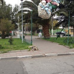 Plaza Villa Gildemeister en Santiago