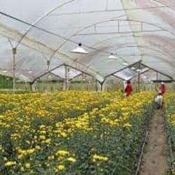 Agrícola Biocultivo Ltda. en Santiago