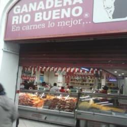 Ganadera Rio Bueno - Puente en Santiago