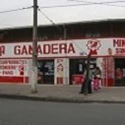 Ganadera Santa Isidora - La Pintana en Santiago