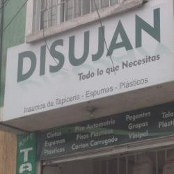 Disujan en Bogotá