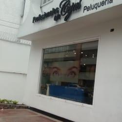 Profesionales en Cejas  en Bogotá