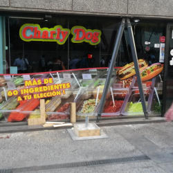 Charly Dog en Santiago