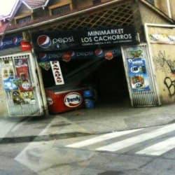 Minimarket Los Cachorros en Santiago