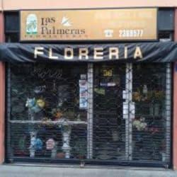 Florería Las Palmeras en Santiago