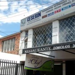 Ceserin Centro de Servicios y Soluciones Industriales en Bogotá
