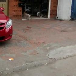 Champion Cars  en Bogotá