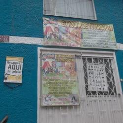 El Hogar de tu Mascota en Bogotá