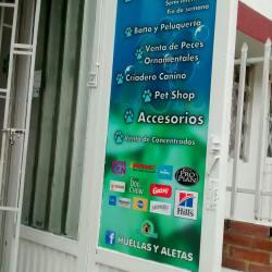 Huellas y Aletas en Bogotá