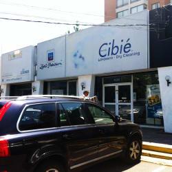 Lavaseco Cibié en Santiago