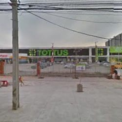 Supermercado Tottus - Vivaceta en Santiago