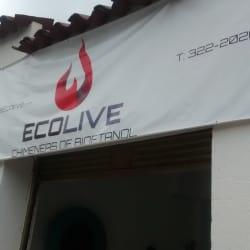 Ecolive Chimeneas de Bioetanol en Bogotá