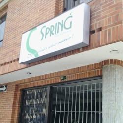 Lavaseco Spring  en Bogotá