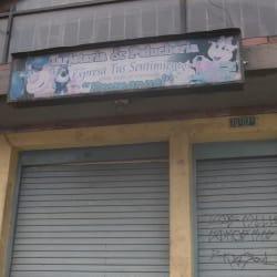 Tarjeteria & Pelucheria Emmanuel en Bogotá