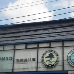 taekwon- do itf en Bogotá