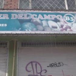 Fruver del Campo B3 en Bogotá