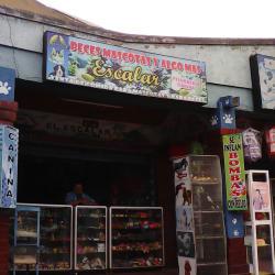 Peces Mascotas y Algo Mas Escalar en Bogotá