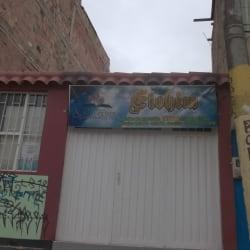 Elohim en Bogotá