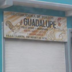 Distribuidora de Pollos Guadalupe en Bogotá
