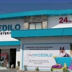 Clínica Veterinaria Cedilo en Santiago