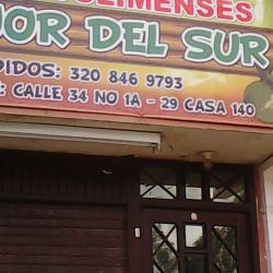 Tamales Tolimenses Calle 34 en Bogotá