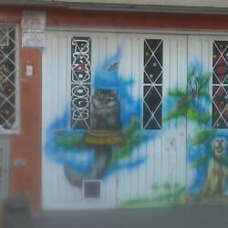 Bradogs Animales en Bogotá