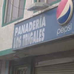 Panaderia Los Trigales en Bogotá