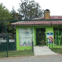 Clínica Veterinaria Diverzoovet en Santiago