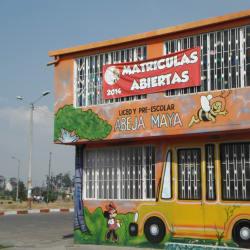 Liceo y Preescolar La Abeja Maya en Bogotá