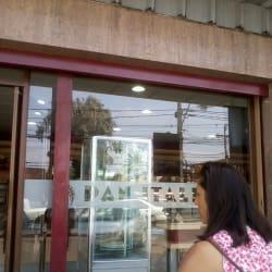 Pan Italia - San Luis de Macul en Santiago