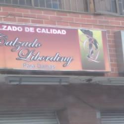 Calzado Libordini Para Damas en Bogotá