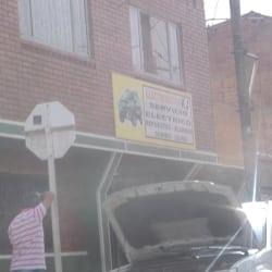 Electroautos KJ en Bogotá