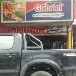 Amortiguadores Gabriel en Santiago