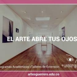 Academia de Artes Guerrero en Bogotá