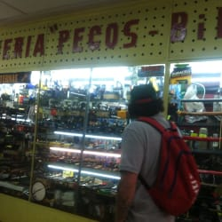 Armería Pecos Bill en Santiago