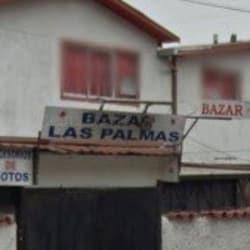 Bazar las palmas en Santiago