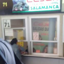 Buses Cejer en Santiago