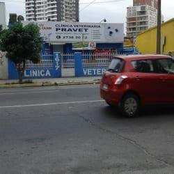 Clínica Veterinaria Pravet en Santiago