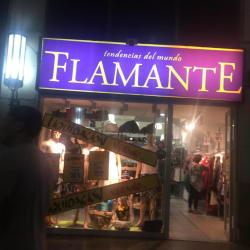 Flamantes Tiendas - Agustinas  en Santiago