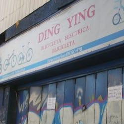 Importadora Ding Ying en Santiago