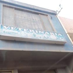 Veterinaria Pet Shop Acuarios en Bogotá